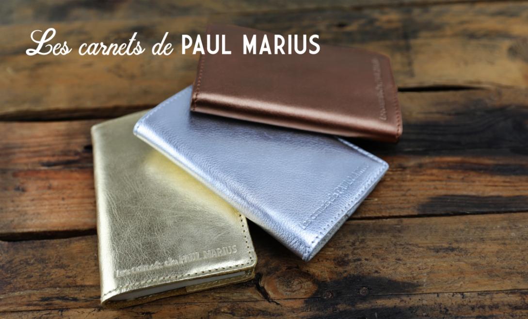 LES CARNETS DE PAUL MARIUS