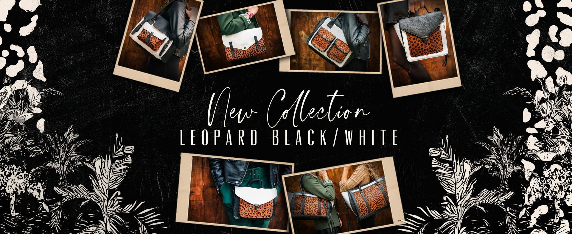 diapo leopard new co