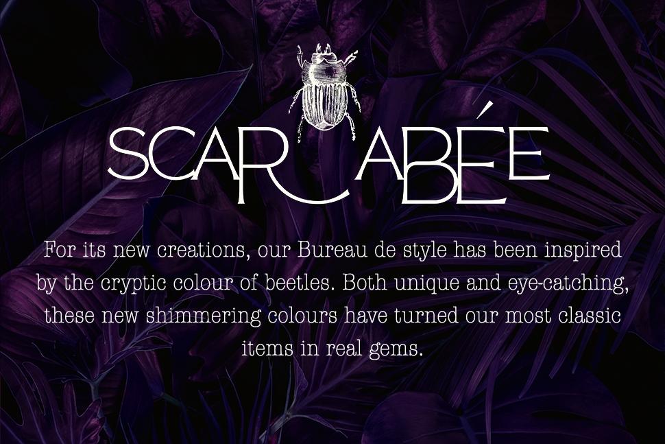 /uploads/media/files//scarabee/visuel-categorie-scarabee-ang.jpg