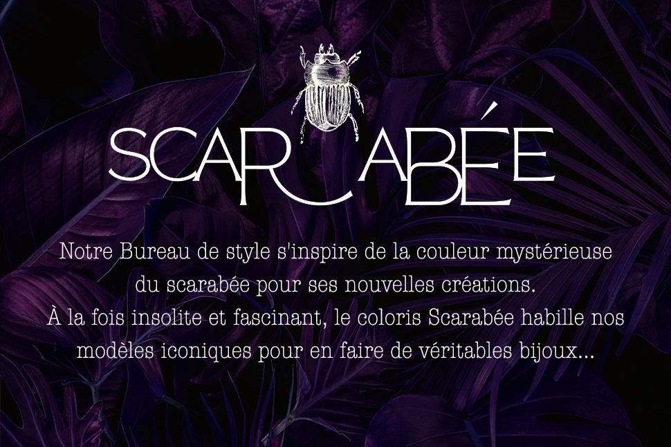 /uploads/media/files//scarabee/visuel-categorie-scarabee.jpg