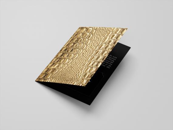 Carte Cadeau - France - 50€