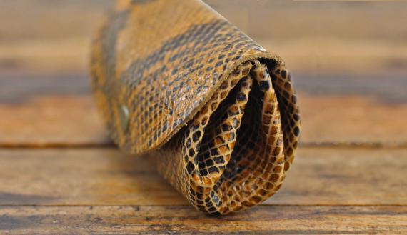 LeGustave Python - Safran